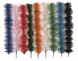 Feather Tree Colors